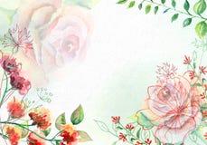 Flores de la acuarela en el papel blanco de la acuarela Foto de archivo