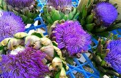 Flores de la alcachofa Fotos de archivo
