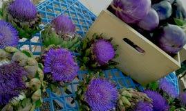 Flores de la alcachofa Imagenes de archivo