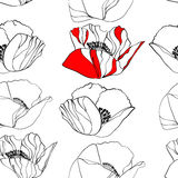 Flores de la amapola Fotos de archivo libres de regalías