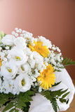 Flores de la begonia y del gerbera Foto de archivo