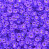 Flores de la belleza que dispersan en el ejemplo de la pared 3D Fotografía de archivo