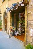 Flores de la bicicleta imágenes de archivo libres de regalías