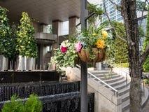 Flores de la calle en Shiodome, Tokio, Japón imágenes de archivo libres de regalías