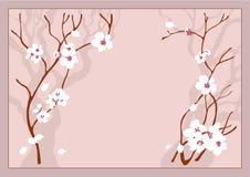 Flores de la cereza ilustración del vector