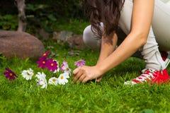 Flores de la cosecha de la muchacha Fotografía de archivo libre de regalías