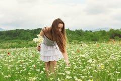 Flores de la cosecha de la muchacha del niño en el prado Foto de archivo libre de regalías
