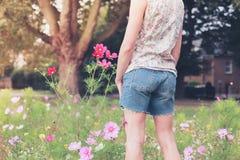 Flores de la cosecha de la mujer joven en prado Fotos de archivo