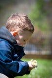 Flores de la explotación agrícola del muchacho Imagen de archivo libre de regalías