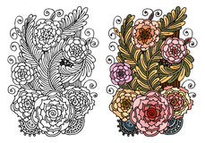 Flores de la fantasía/página floral del libro de colorear - dé el garabato exhausto - ejemplo modelado floral Foto de archivo