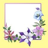 Flores de la genciana y del jardín Imagenes de archivo