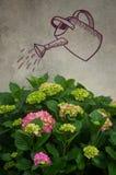 Flores de la hortensia Imagen de archivo libre de regalías