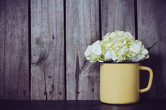 Flores de la hortensia Fotografía de archivo