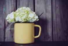 Flores de la hortensia Foto de archivo libre de regalías