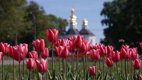Flores de la iglesia Imagenes de archivo