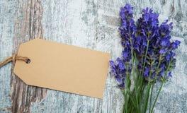Flores de la lavanda con la etiqueta fotografía de archivo libre de regalías