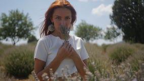 Flores de la lavanda de la cosecha de la mujer almacen de video