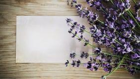 Flores de la lavanda sobre fondo de madera Imágenes de archivo libres de regalías