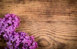 Flores de la lila en la tabla de madera de marrón oscuro Fotografía de archivo