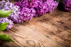 Flores de la lila en la tabla de madera de marrón oscuro Fotografía de archivo libre de regalías