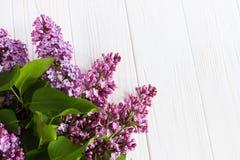 Flores de la lila en la tabla de madera Tarjeta de felicitación Fotos de archivo libres de regalías