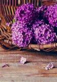 Flores de la lila en una tabla Imagenes de archivo