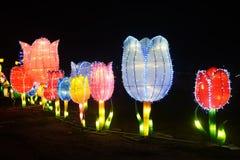 Flores de la luz del LED en parque Imágenes de archivo libres de regalías