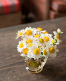 Flores de la margarita Fotografía de archivo
