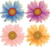 Flores de la margarita ilustración del vector