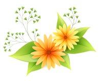 Flores de la margarita del vector con follaje libre illustration