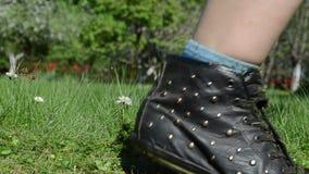 Flores de la margarita en hierba del corte del cortacéspedes del cortador del prado y del césped del trabajador Fotos de archivo libres de regalías