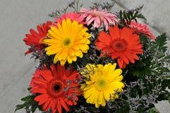 Flores de la margarita en ramo Fotos de archivo