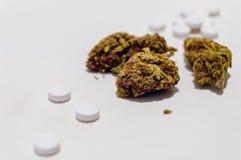 Flores de la marijuana del cáñamo y opiáceo de las píldoras de dolor de la prescripción narcótico Medicina alternativa fotos de archivo libres de regalías