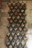 Flores de la mayólica Fotografía de archivo