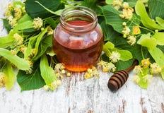 Flores de la miel y del tilo Fotografía de archivo