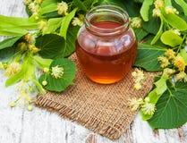 Flores de la miel y del tilo Fotos de archivo libres de regalías