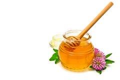 Flores de la miel y del trébol Fotos de archivo libres de regalías