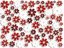Flores de la Navidad Fotografía de archivo libre de regalías