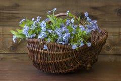 Flores de la nomeolvides en la cesta foto de archivo