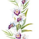 Flores de la orquídea de la acuarela Fotografía de archivo libre de regalías