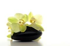 Flores de la orquídea en piedra caliente pulida del masaje foto de archivo