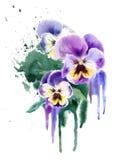Flores de la púrpura de la acuarela Fotos de archivo libres de regalías
