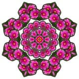 Flores de la púrpura del caleidoscopio Fotos de archivo libres de regalías