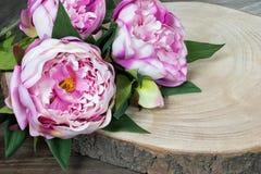 Flores de la peonía Imagenes de archivo