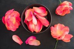 Flores de la peonía del papel de crespón Fotografía de archivo