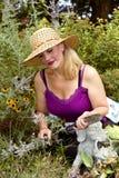 Flores de la poda Imagenes de archivo