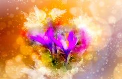 Flores de la primavera, azafrán y fondo suavemente borroso de la acuarela Fotografía de archivo