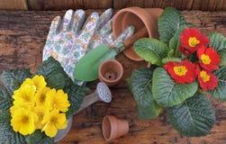 Flores de la primavera con los accesorios que cultivan un huerto Fotografía de archivo