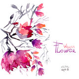 Flores de la primavera de la acuarela Imágenes de archivo libres de regalías