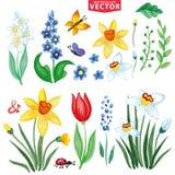 Flores de la primavera de la acuarela fijadas Imagen de archivo